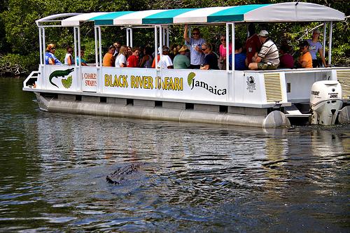 Black River Safari - boat