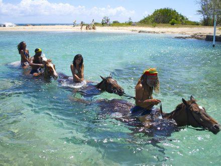 Braco Horseback riding